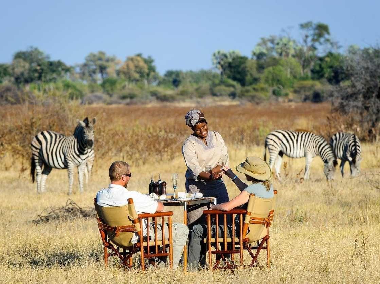 Le large choix des hotel botswana