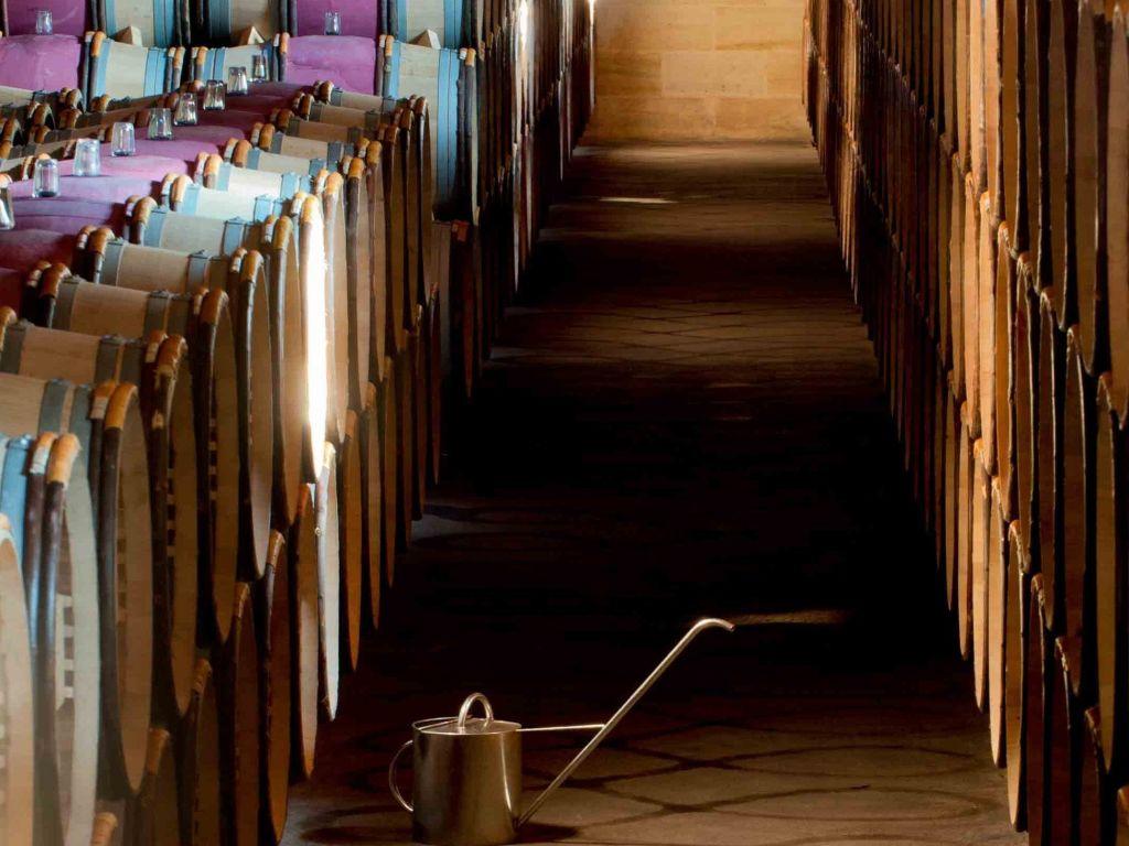 Investir dans le vin : un choix judicieux