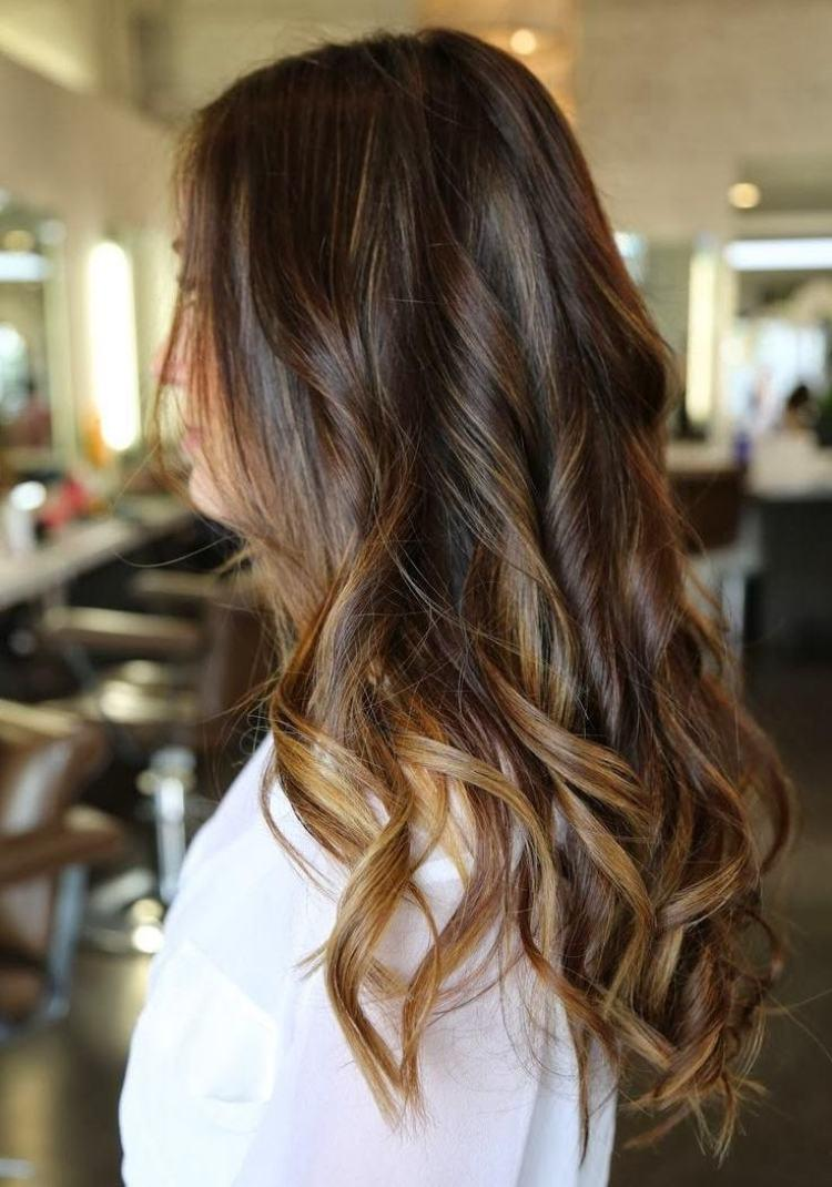 Photo cheveux long chatain